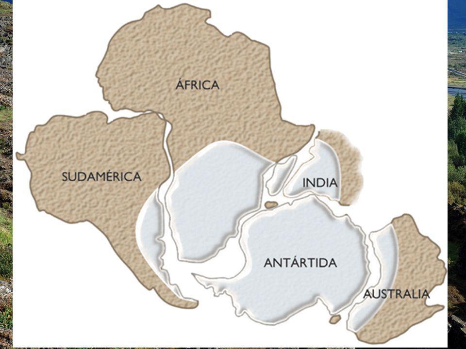 PRUEBAS PALEOCLIMÁTICAS Se tienen pruebas de que en continentes hoy separados y situados en la actualidad en latitudes diferentes (y por lo tanto con climas distintos) hubo el mismo clima en épocas pasadas.