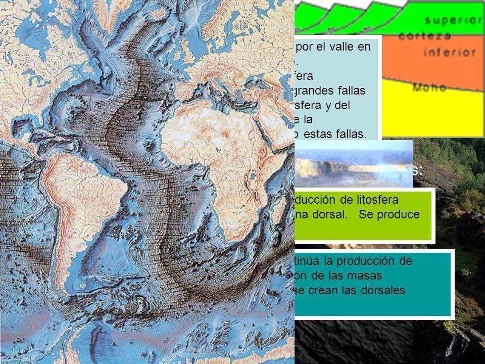 Un borde constructivo conlleva la ruptura de un continente y la formación de un océano cuyo fondo se irá expandiendo.