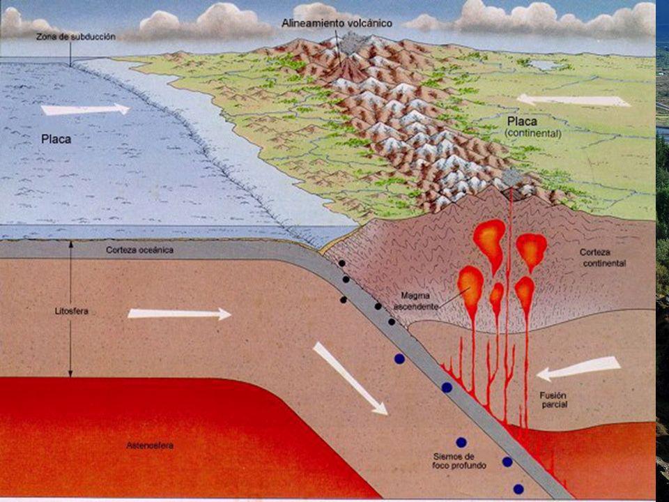 BORDES DESTRUCTIVOS Cuando dos placas se aproximan no chocan sino que una (la más densa: la que tiene más proporción de corteza oceánica) se introduce debajo de la otra.