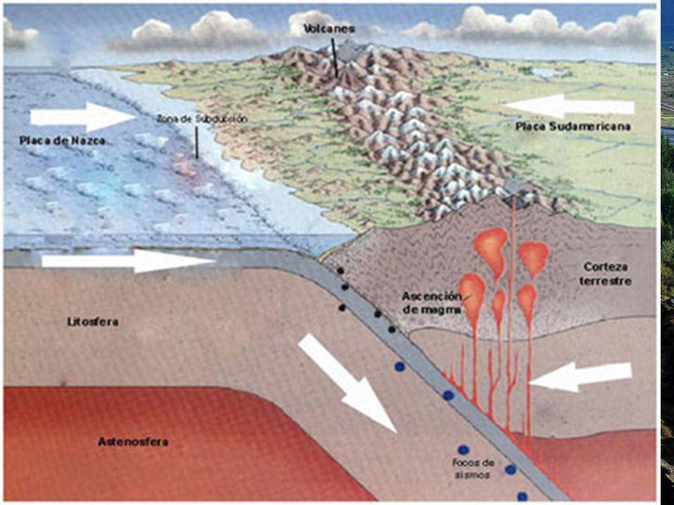 Borde de tipo andino Subduce la placa oceánica.Se produce una fosa oceánica poco profunda.