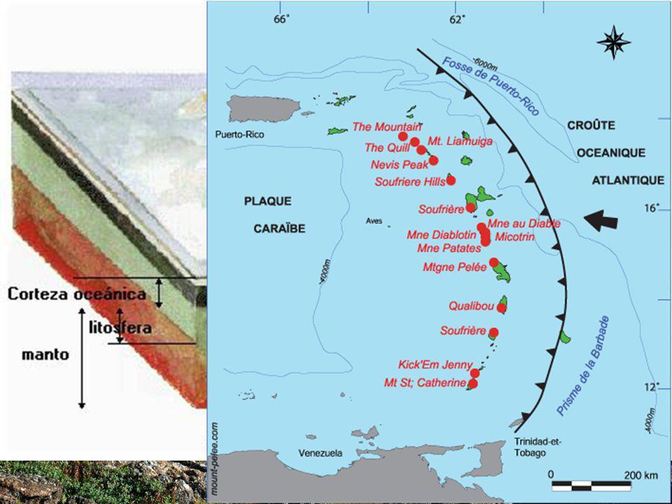 Borde de tipo Arco-Isla Subduce la placa más lejana al continente (que es la que tiene más proporción de corteza oceánica) Se forma una cadena de islas volcánicas situadas en forma de arco frente al continente.