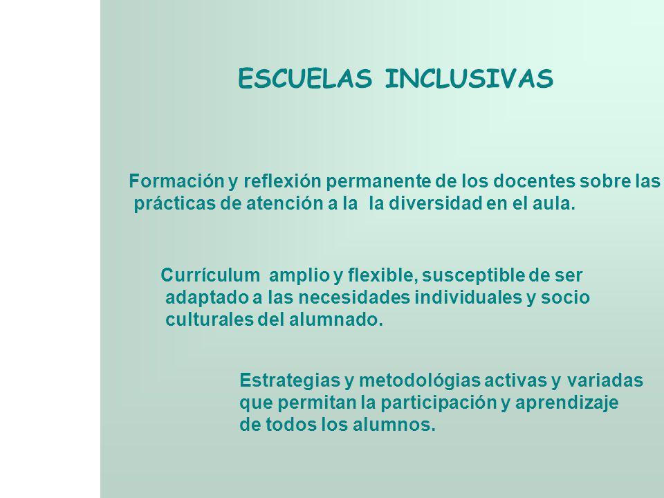 ESCUELAS INCLUSIVAS Criterios y procedimientos flexibles de evaluación y promoción Desarrollo de una cultura de apoyo y colaboración entre la familia, docentes y alumnos Recursos y servicios de apoyo disponibles para los docentes, los alumnos y los padres