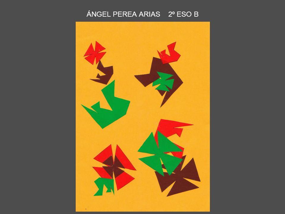 ÁNGEL PEREA ARIAS 2º ESO B