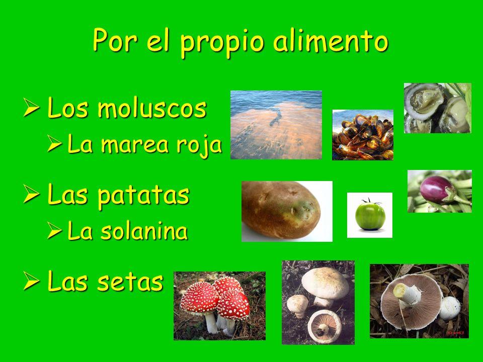 Por el propio alimento Los moluscos Los moluscos La marea roja La marea roja Las patatas Las patatas La solanina La solanina Las setas Las setas
