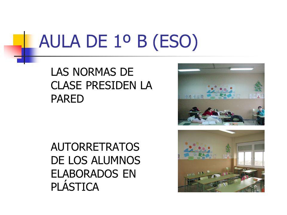AULA DE 1º B (ESO) LAS NORMAS DE CLASE PRESIDEN LA PARED AUTORRETRATOS DE LOS ALUMNOS ELABORADOS EN PLÁSTICA