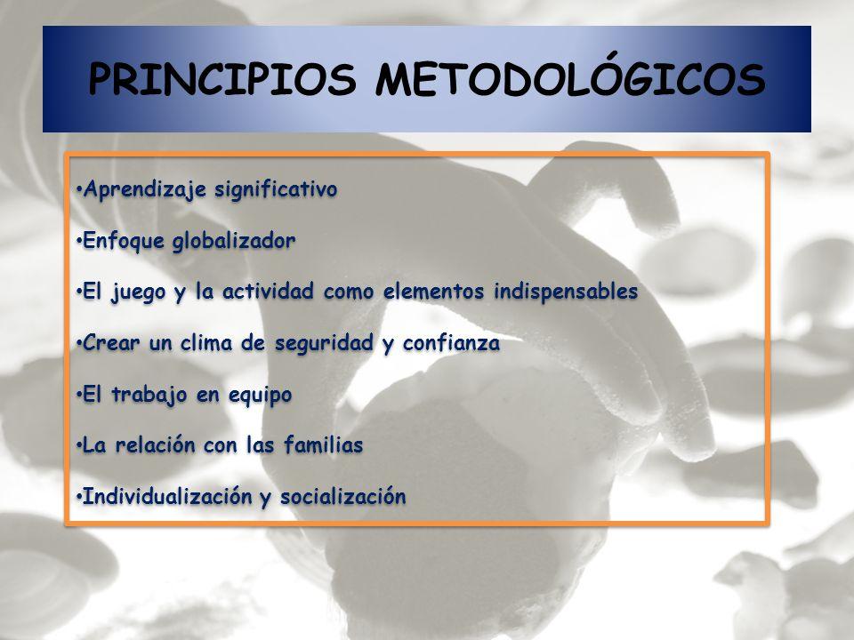 PRINCIPIOS METODOLÓGICOS Aprendizaje significativo Enfoque globalizador El juego y la actividad como elementos indispensables Crear un clima de seguri
