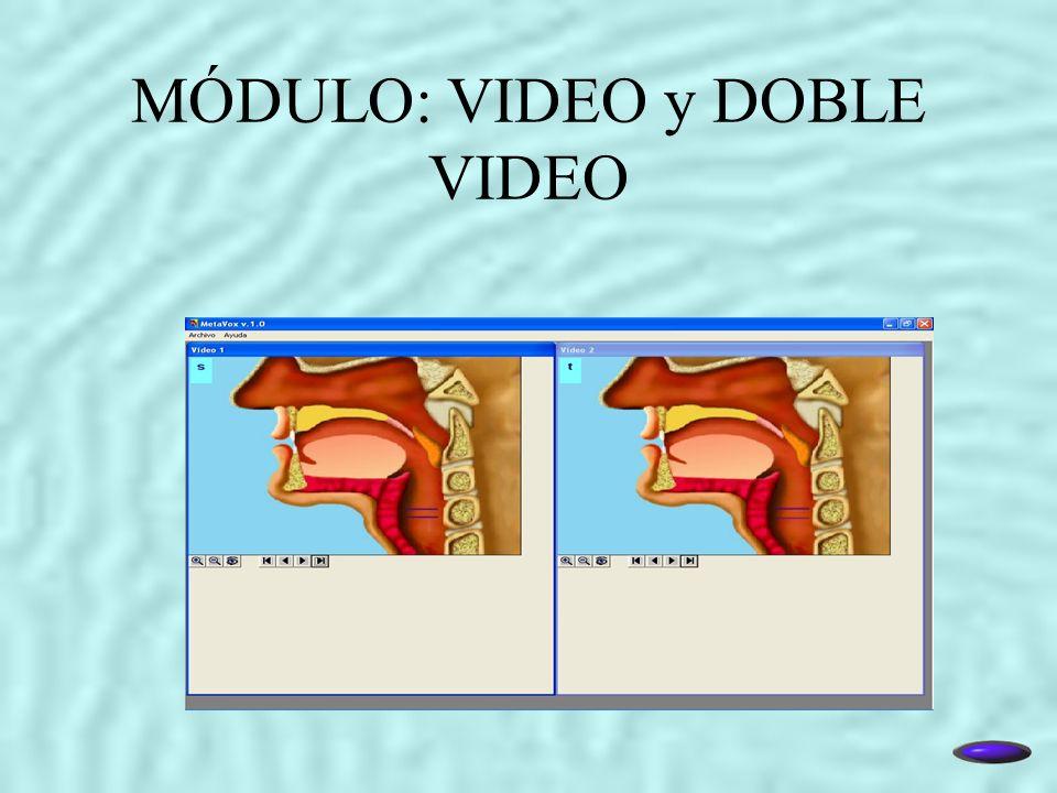 MÓDULO: VIDEO y DOBLE VIDEO