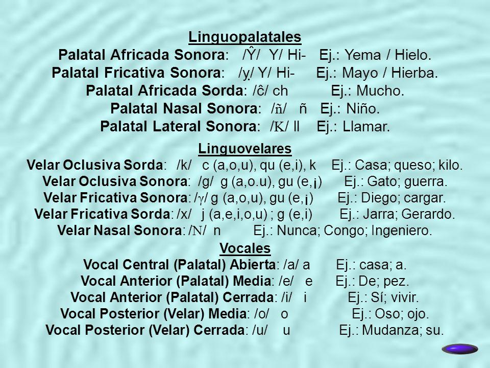 Linguopalatales Palatal Africada Sonora: /Ŷ/ Y/ Hi- Ej.: Yema / Hielo. Palatal Fricativa Sonora: // Y/ Hi- Ej.: Mayo / Hierba. Palatal Africada Sorda: