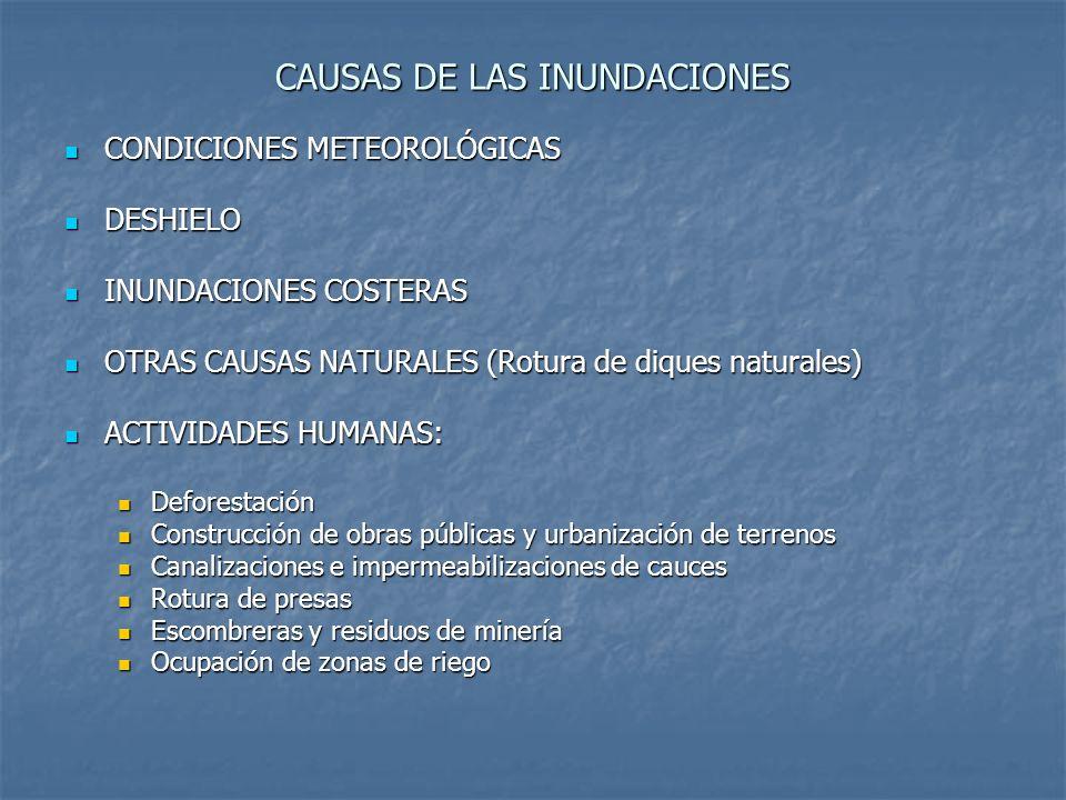 CAUSAS DE LAS INUNDACIONES CONDICIONES METEOROLÓGICAS CONDICIONES METEOROLÓGICAS DESHIELO DESHIELO INUNDACIONES COSTERAS INUNDACIONES COSTERAS OTRAS C
