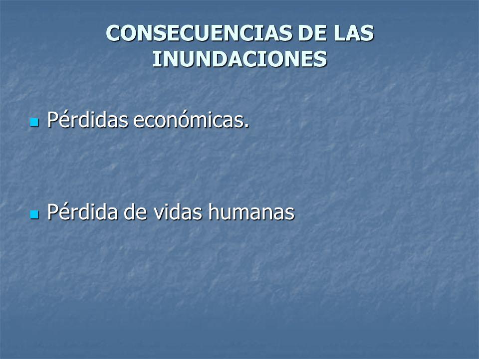 CONSECUENCIAS DE LAS INUNDACIONES Pérdidas económicas. Pérdidas económicas. Pérdida de vidas humanas Pérdida de vidas humanas
