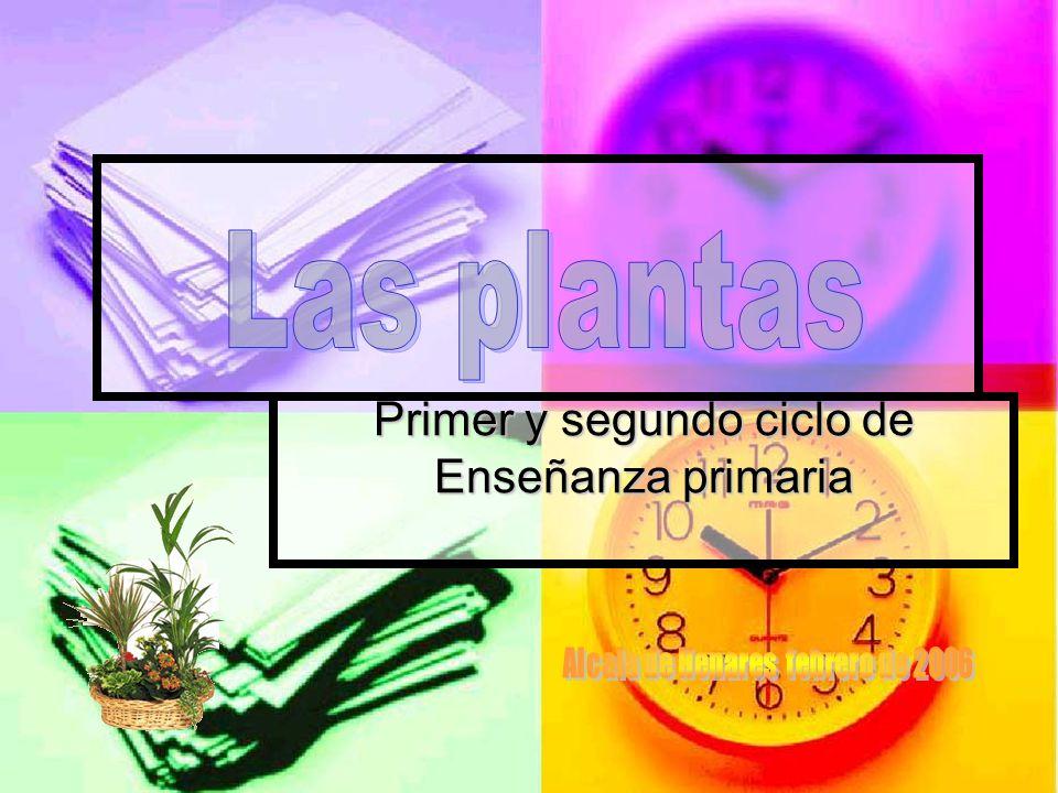 Primer y segundo ciclo de Enseñanza primaria