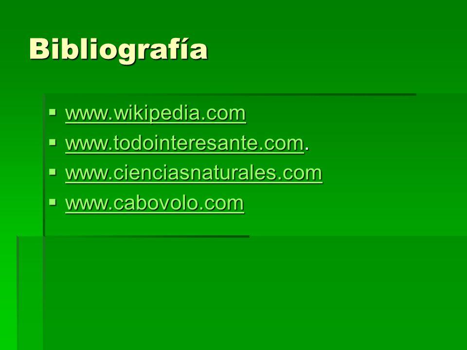 Bibliografía www.wikipedia.com www.wikipedia.com www.wikipedia.com www.todointeresante.com. www.todointeresante.com. www.todointeresante.com www.cienc