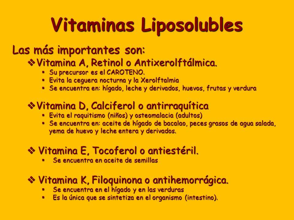 Vitaminas Liposolubles Las más importantes son: Vitamina A, Retinol o Antixerolftálmica.