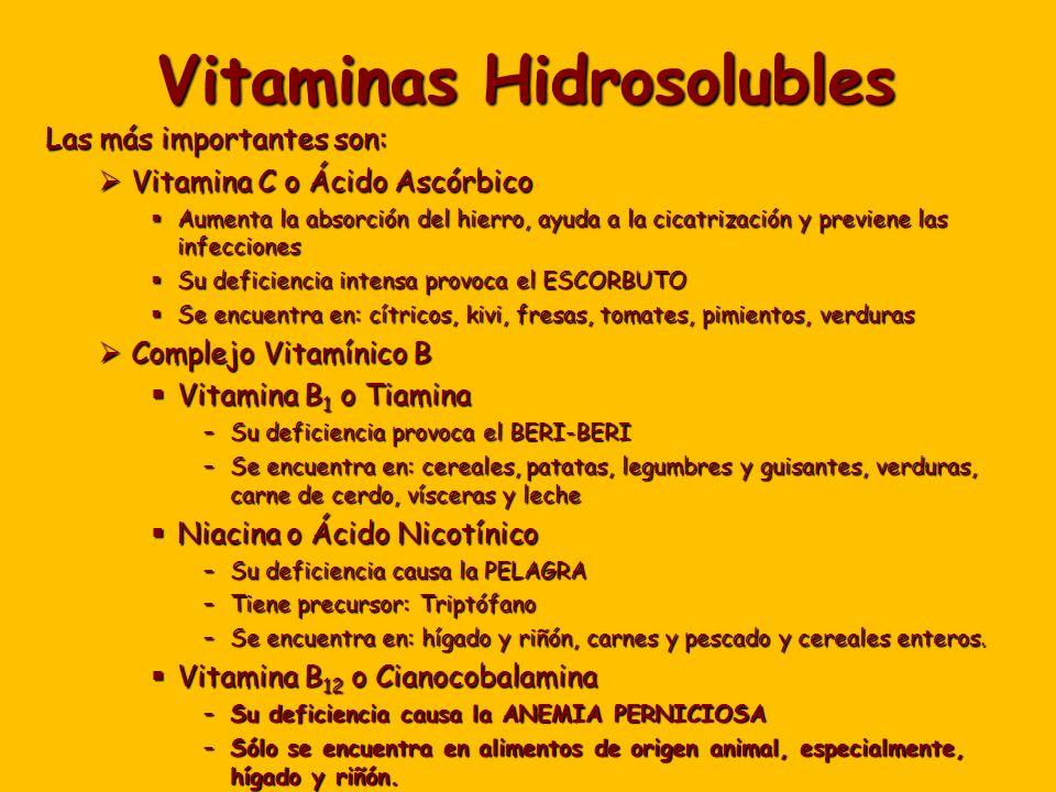 Vitaminas Hidrosolubles Las más importantes son: Vitamina C o Ácido Ascórbico Vitamina C o Ácido Ascórbico Aumenta la absorción del hierro, ayuda a la cicatrización y previene las infecciones Aumenta la absorción del hierro, ayuda a la cicatrización y previene las infecciones Su deficiencia intensa provoca el ESCORBUTO Su deficiencia intensa provoca el ESCORBUTO Se encuentra en: cítricos, kivi, fresas, tomates, pimientos, verduras Se encuentra en: cítricos, kivi, fresas, tomates, pimientos, verduras Complejo Vitamínico B Complejo Vitamínico B Vitamina B 1 o Tiamina Vitamina B 1 o Tiamina –Su deficiencia provoca el BERI-BERI –Se encuentra en: cereales, patatas, legumbres y guisantes, verduras, carne de cerdo, vísceras y leche Niacina o Ácido Nicotínico Niacina o Ácido Nicotínico –Su deficiencia causa la PELAGRA –Tiene precursor: Triptófano –Se encuentra en: hígado y riñón, carnes y pescado y cereales enteros.