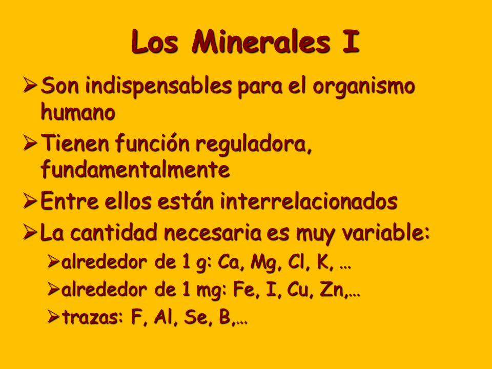 Los Minerales I Son indispensables para el organismo humano Son indispensables para el organismo humano Tienen función reguladora, fundamentalmente Tienen función reguladora, fundamentalmente Entre ellos están interrelacionados Entre ellos están interrelacionados La cantidad necesaria es muy variable: La cantidad necesaria es muy variable: alrededor de 1 g: Ca, Mg, Cl, K, … alrededor de 1 g: Ca, Mg, Cl, K, … alrededor de 1 mg: Fe, I, Cu, Zn,… alrededor de 1 mg: Fe, I, Cu, Zn,… trazas: F, Al, Se, B,… trazas: F, Al, Se, B,…