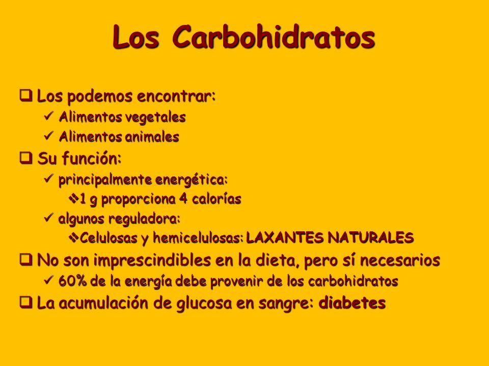 Los Carbohidratos Los podemos encontrar: Los podemos encontrar: Alimentos vegetales Alimentos vegetales Alimentos animales Alimentos animales Su función: Su función: principalmente energética: principalmente energética: 1 g proporciona 4 calorías 1 g proporciona 4 calorías algunos reguladora: algunos reguladora: Celulosas y hemicelulosas: LAXANTES NATURALES Celulosas y hemicelulosas: LAXANTES NATURALES No son imprescindibles en la dieta, pero sí necesarios No son imprescindibles en la dieta, pero sí necesarios 60% de la energía debe provenir de los carbohidratos 60% de la energía debe provenir de los carbohidratos La acumulación de glucosa en sangre: diabetes La acumulación de glucosa en sangre: diabetes