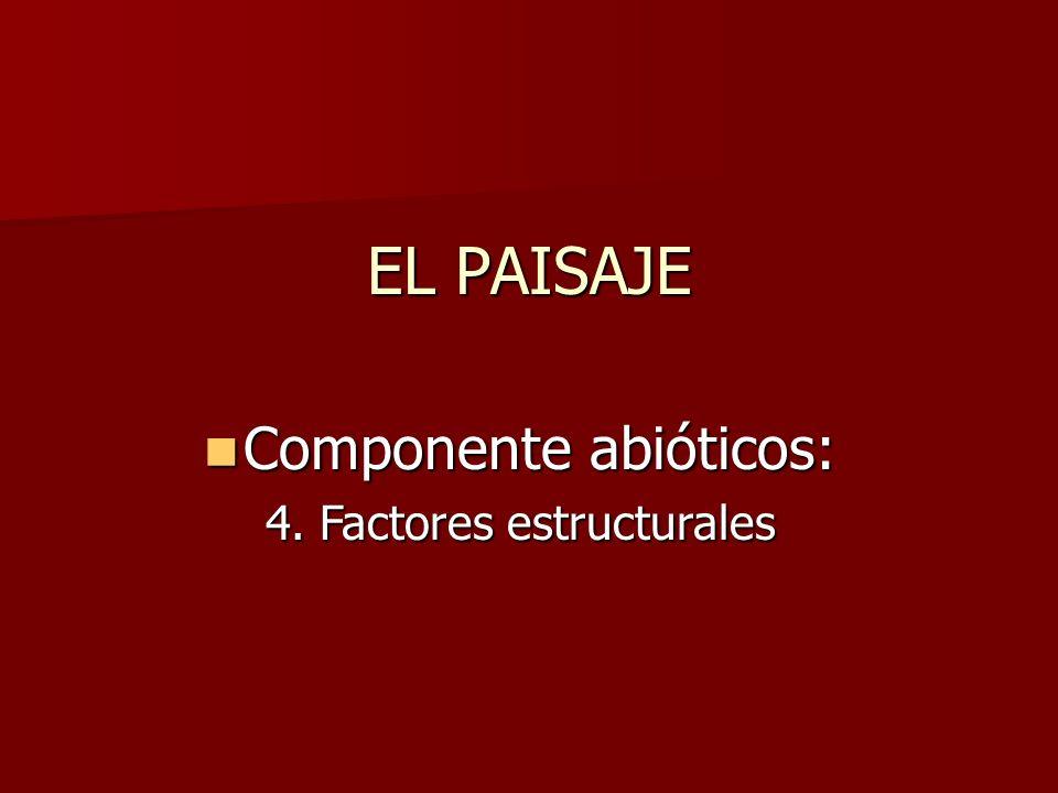 EL PAISAJE Componente abióticos: Componente abióticos: 4. Factores estructurales
