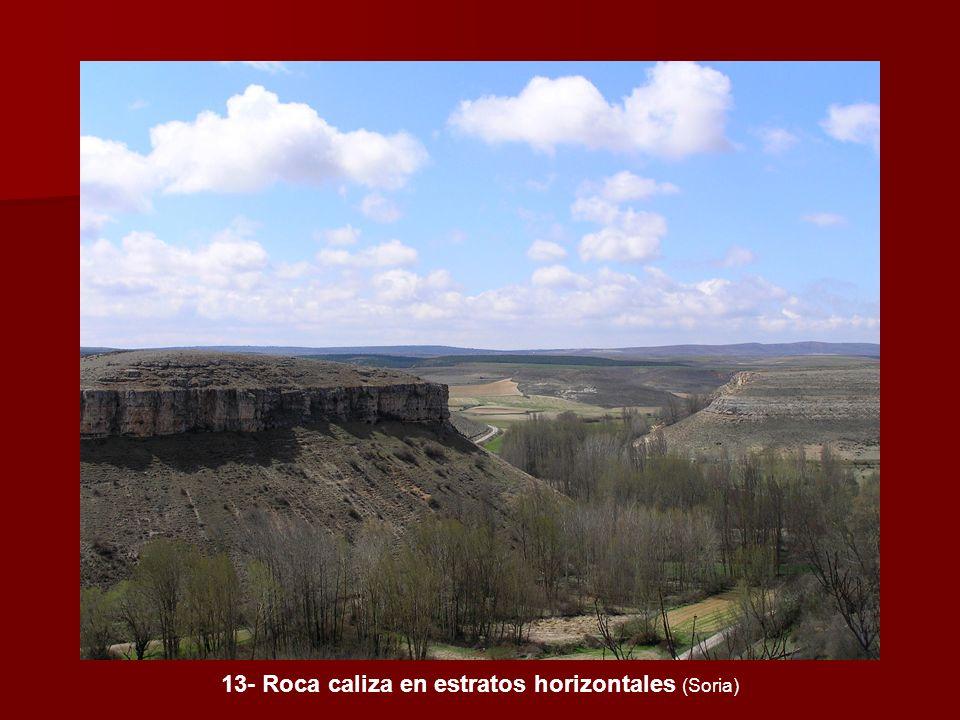 13- Roca caliza en estratos horizontales (Soria)