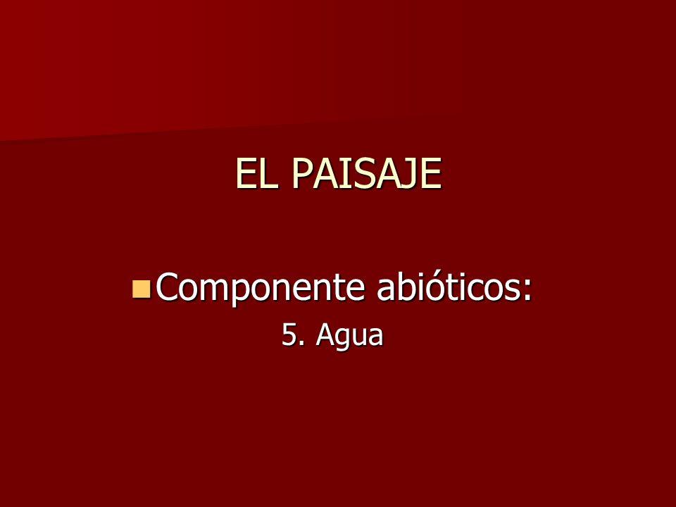 Componente abióticos: Componente abióticos: 5. Agua EL PAISAJE