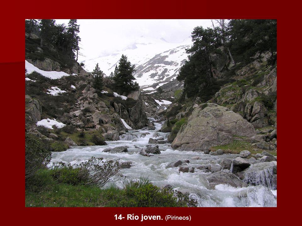 14- Río joven. (Pirineos)