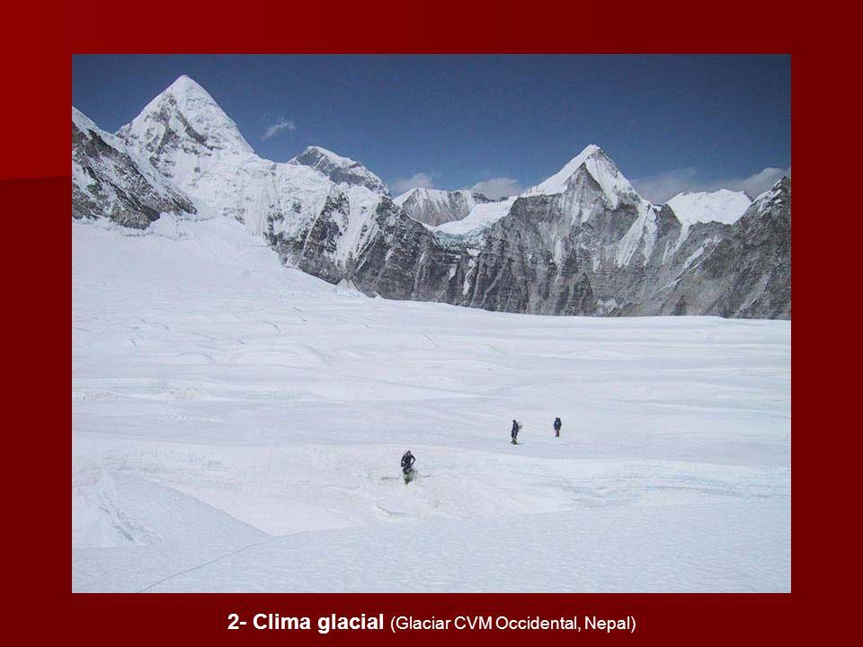 2- Clima glacial (Glaciar CVM Occidental, Nepal)