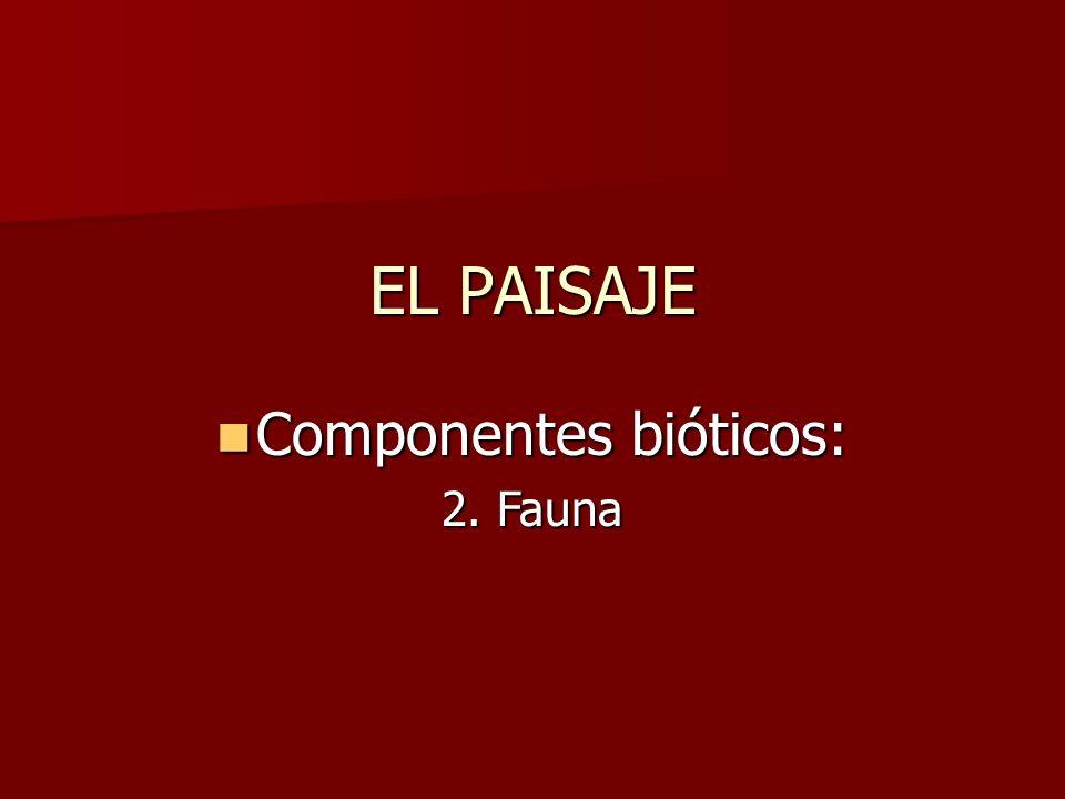 Componentes bióticos: Componentes bióticos: 2. Fauna EL PAISAJE