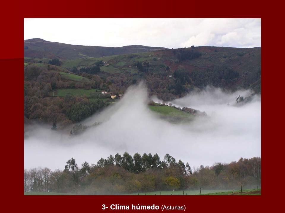 3- Clima húmedo (Asturias)