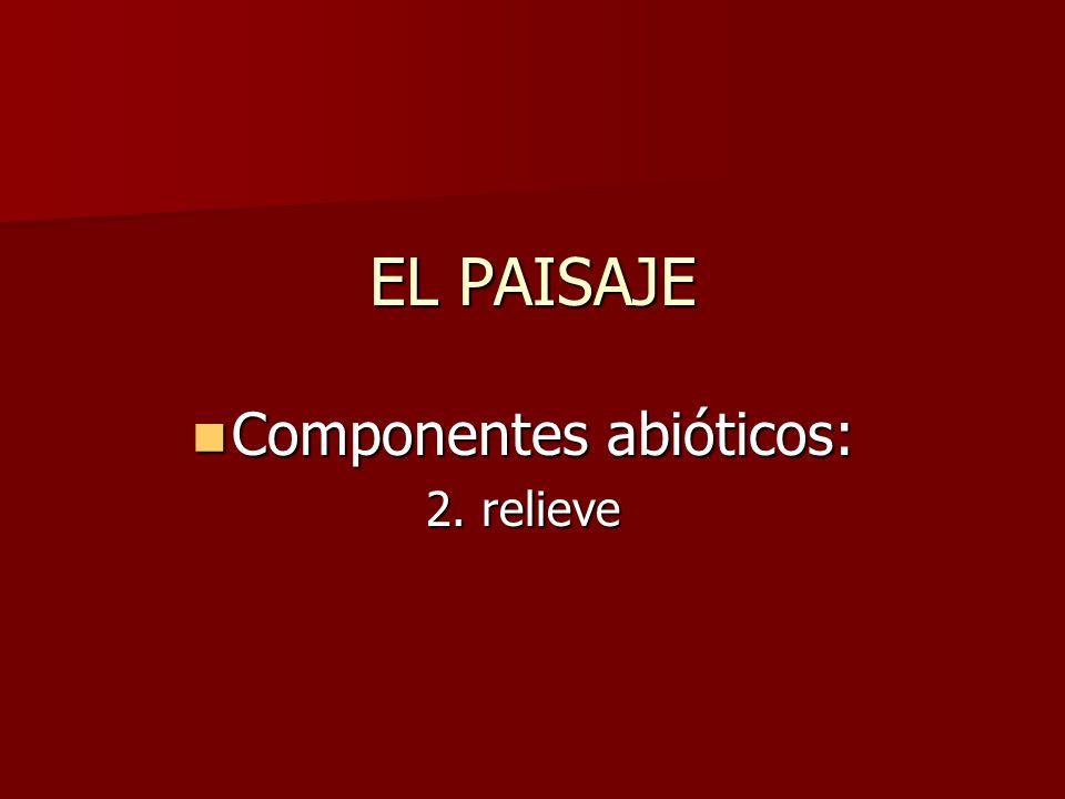 EL PAISAJE Componentes abióticos: Componentes abióticos: 2. relieve