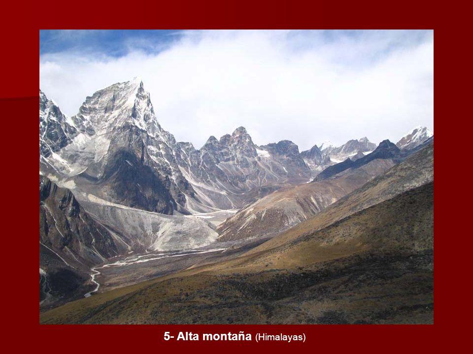 5- Alta montaña (Himalayas)
