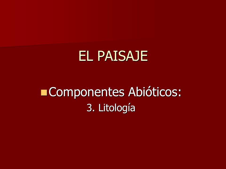 EL PAISAJE Componentes Abióticos: Componentes Abióticos: 3. Litología