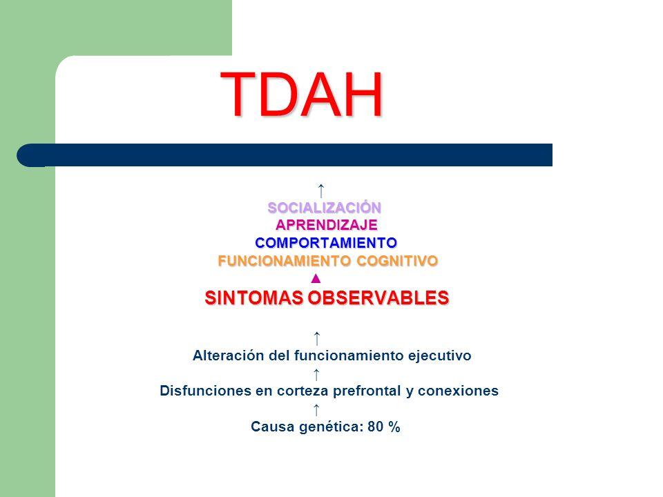 TDAH TDAH SOCIALIZACIÓN APRENDIZAJE APRENDIZAJE COMPORTAMIENTO COMPORTAMIENTO FUNCIONAMIENTO COGNITIVO FUNCIONAMIENTO COGNITIVO SINTOMAS OBSERVABLES A