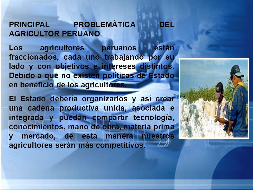 PRINCIPAL PROBLEMÁTICA DEL AGRICULTOR PERUANO Los agricultores peruanos están fraccionados, cada uno trabajando por su lado y con objetivos e interese
