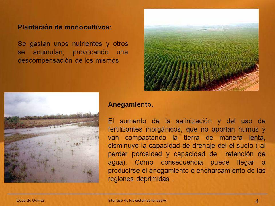 Eduardo GómezInterfase de los sistemas terrestres 4 Plantación de monocultivos: Se gastan unos nutrientes y otros se acumulan, provocando una descompe