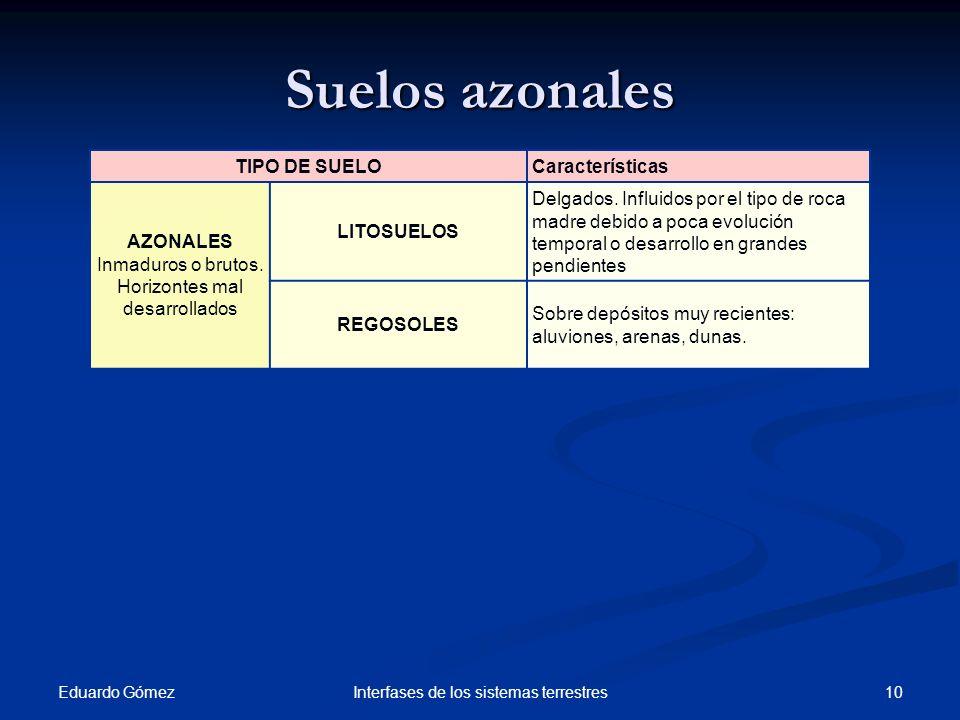Suelos azonales Eduardo Gómez 10Interfases de los sistemas terrestres TIPO DE SUELOCaracterísticas AZONALES Inmaduros o brutos. Horizontes mal desarro