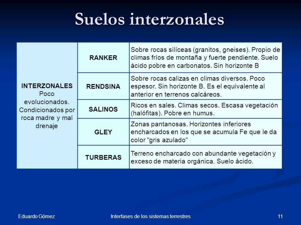 Suelos interzonales Eduardo Gómez 11Interfases de los sistemas terrestres INTERZONALES Poco evolucionados. Condicionados por roca madre y mal drenaje