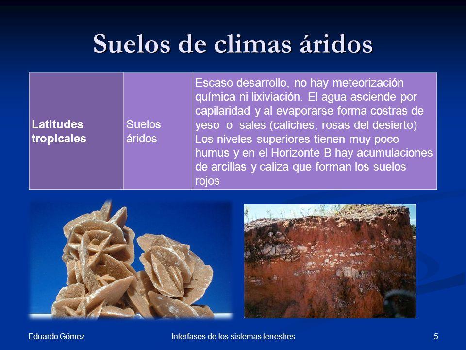 Suelos de climas áridos Eduardo Gómez 5Interfases de los sistemas terrestres Latitudes tropicales Suelos áridos Escaso desarrollo, no hay meteorizació