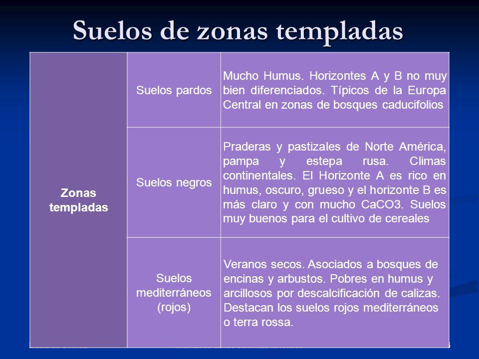 Suelos de zonas templadas Eduardo Gómez 6Interfases de los sistemas terrestres Zonas templadas Suelos pardos Mucho Humus. Horizontes A y B no muy bien