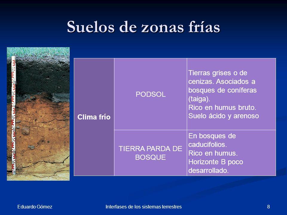 Suelos de zonas frías Eduardo Gómez 8Interfases de los sistemas terrestres Clima frío PODSOL Tierras grises o de cenizas. Asociados a bosques de coníf