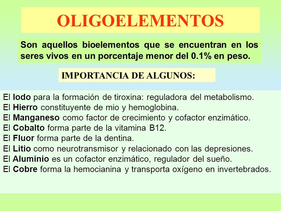 OLIGOELEMENTOS Son aquellos bioelementos que se encuentran en los seres vivos en un porcentaje menor del 0.1% en peso. IMPORTANCIA DE ALGUNOS: El Iodo