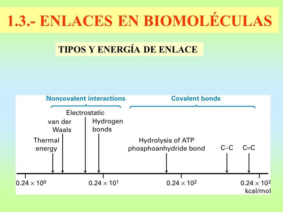 1.3.- ENLACES EN BIOMOLÉCULAS TIPOS Y ENERGÍA DE ENLACE