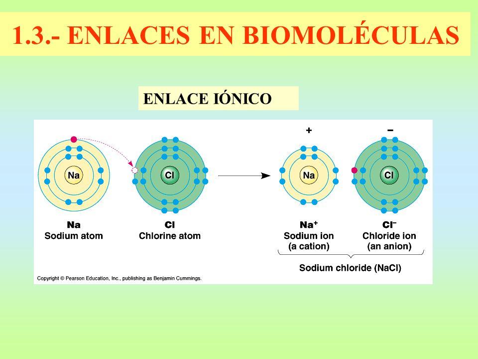 1.3.- ENLACES EN BIOMOLÉCULAS ENLACE IÓNICO