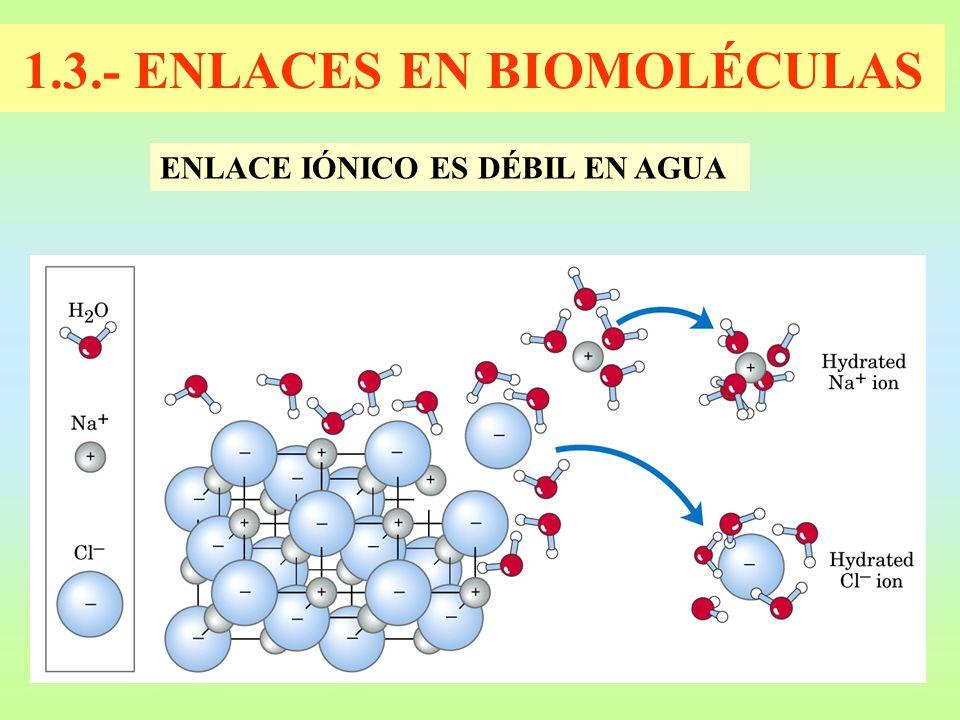 1.3.- ENLACES EN BIOMOLÉCULAS ENLACE IÓNICO ES DÉBIL EN AGUA