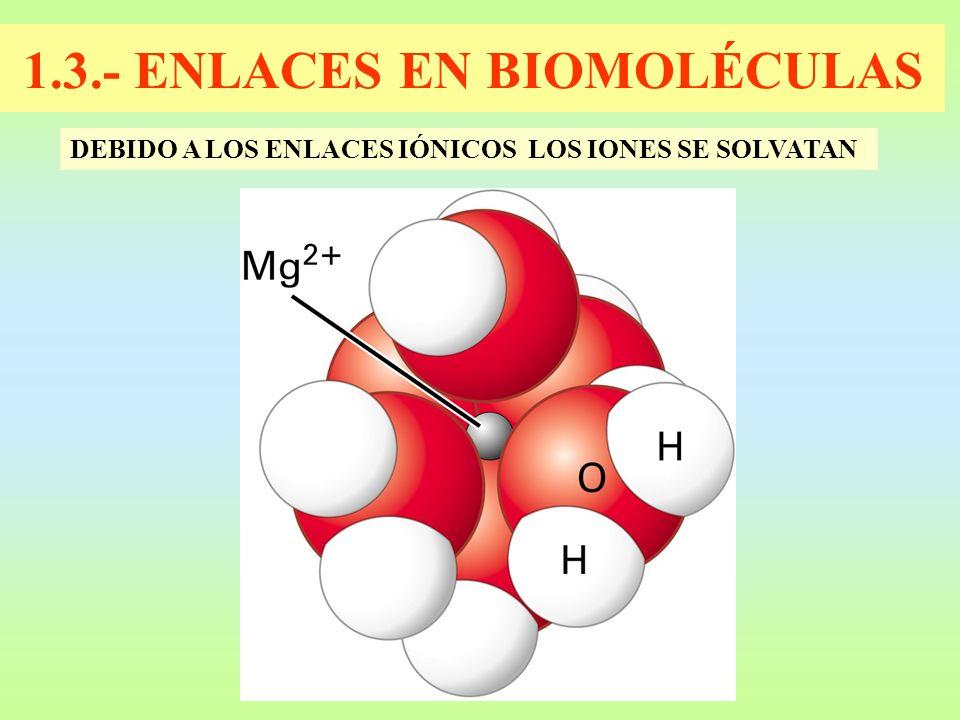 1.3.- ENLACES EN BIOMOLÉCULAS DEBIDO A LOS ENLACES IÓNICOS LOS IONES SE SOLVATAN