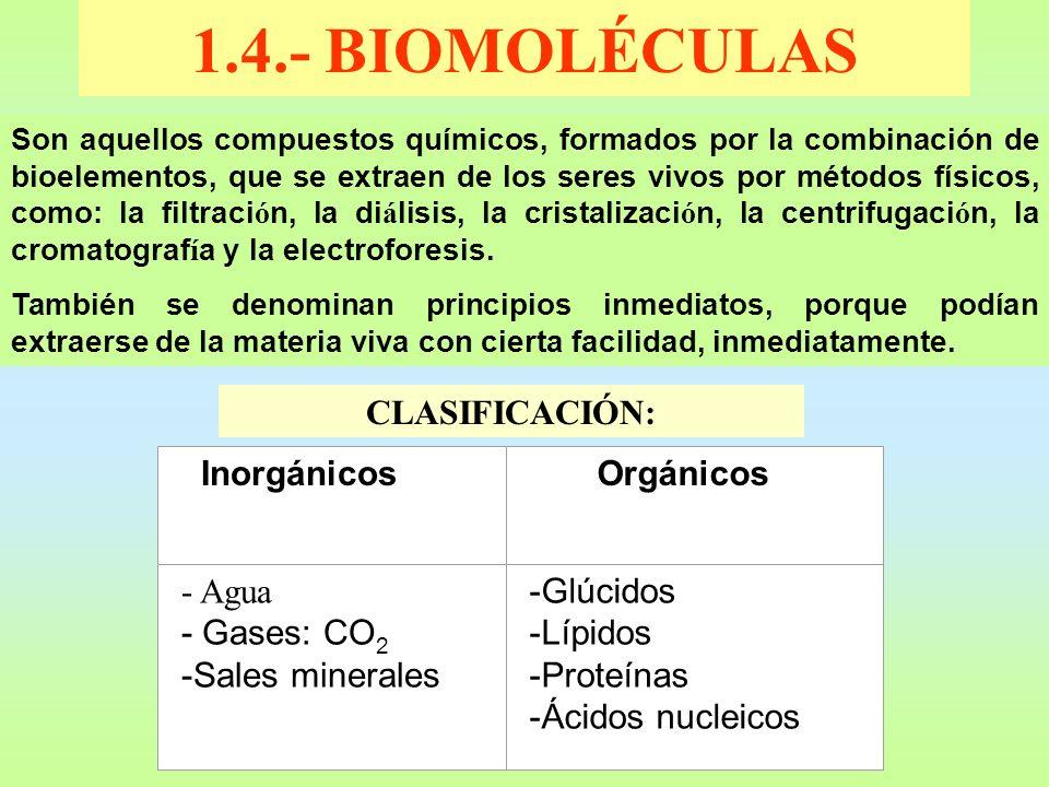 1.4.- BIOMOLÉCULAS Son aquellos compuestos químicos, formados por la combinación de bioelementos, que se extraen de los seres vivos por métodos físico