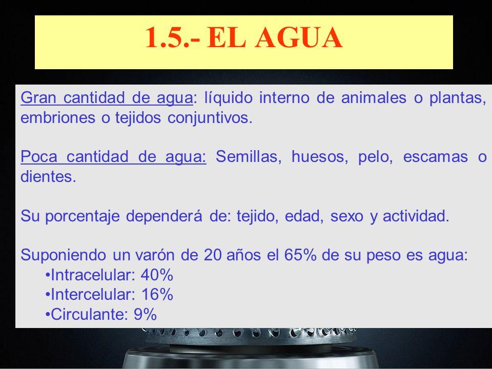 Gran cantidad de agua: líquido interno de animales o plantas, embriones o tejidos conjuntivos. Poca cantidad de agua: Semillas, huesos, pelo, escamas