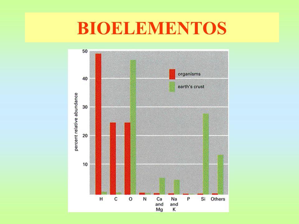 BIOELEMENTOS ElementosCorteza (%) Elementos Seres vivos (%) Oxígeno Silicio Aluminio Hierro 47 28 8 0,5 Oxígeno Carbono Hidrógeno Nitrógeno 63 20 9,5 3