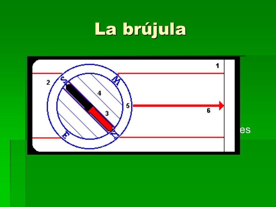 La brújula Partes: Base de plástico transparente Limbo graduado Aguja magnética Flecha de dirección y sus líneas auxiliares