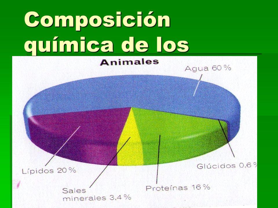 Composición química de los seres vivos parte 4
