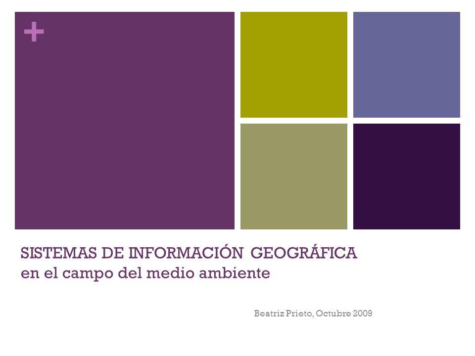 + SISTEMAS DE INFORMACIÓN GEOGRÁFICA en el campo del medio ambiente Beatriz Prieto, Octubre 2009