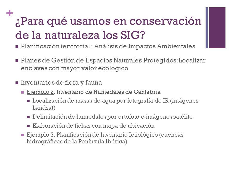 + ¿Para qué usamos en conservación de la naturaleza los SIG? Planificación territorial : Análisis de Impactos Ambientales Planes de Gestión de Espacio